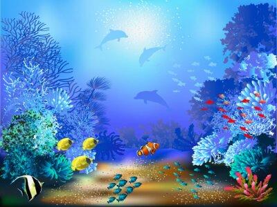 Фотообои The underwater world with fish and plants