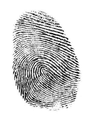 Фотообои Большой палец печати