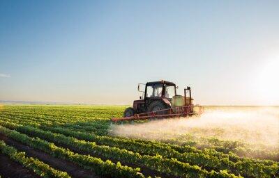 Фотообои Трактор распыления поле сои
