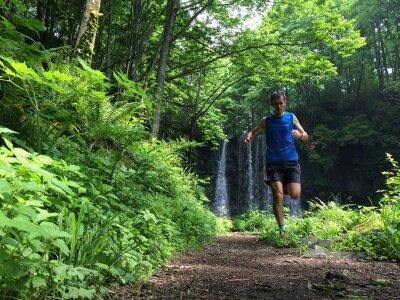 Фотообои Trail runner on woodland path