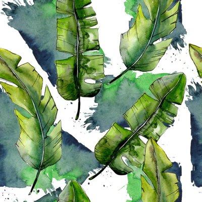Фотообои Тропические зеленые лесбиянки в стиле акварельного стиля. Лист Aquarelle для фона, текстуры, обертки, рамки или границы.
