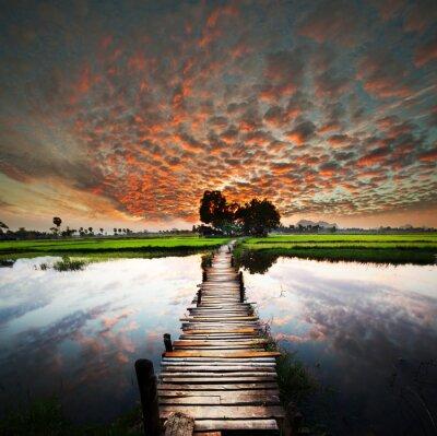 Фотообои Тропический река
