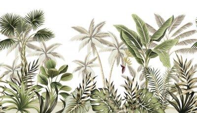 Фотообои Tropical vintage botanical landscape, palm tree, banana tree, plant floral seamless border white background. Exotic green jungle wallpaper.