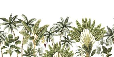 Фотообои Tropical vintage botanical palm trees, banana tree floral seamless border white background. Exotic jungle wallpaper.