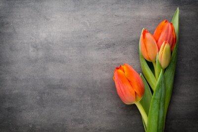 Фотообои Тюльпаны, оранжевый на сером фоне.