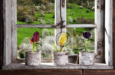 Фотообои Tulpen ам Fenster мит Blick в фильеры Ланд