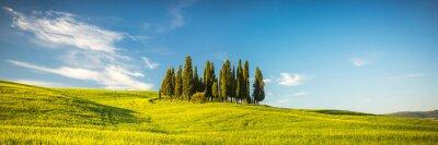 Фотообои Тоскана в весной