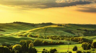 Фотообои Тоскана весна, холмы на закате. Сельский пейзаж. зеленый