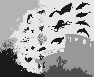 Фотообои подводный