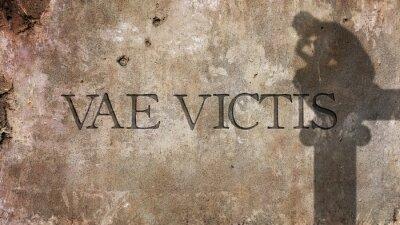 Фотообои Vae Victis. Латинской фразы для Горе побежденным