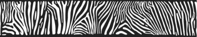 Фотообои Вектор фон с зебра кожи