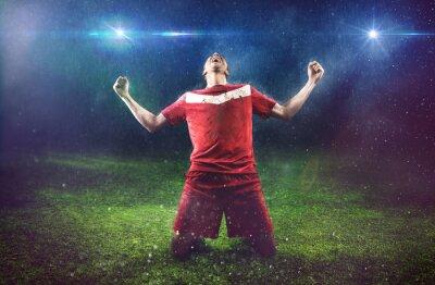 Фотообои Победный футболист