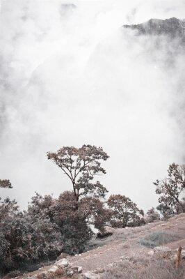 Фотообои Вид из Мачу-Пикчу