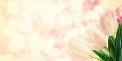 Фотообои Старинные открытки с тюльпан цветы