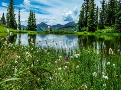 Фотообои достопримечательность озера Paridise в Paridise бассейна рядом хохлатая холма Колорадо