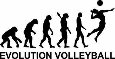 Фотообои Волейбол Evolution