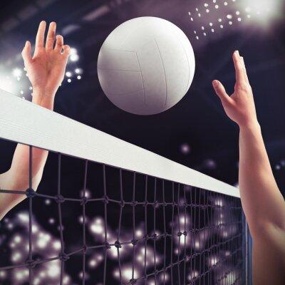 Фотообои Volleyball match