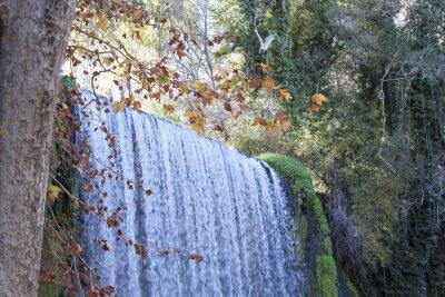 Фотообои водопад осенью полном листьев