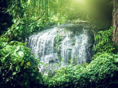 Фотообои Водопад в джунглях Сейшелы, Маэ Исландии