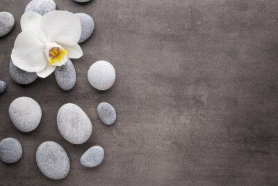Фотообои Белые орхидеи и спа камни на сером фоне.