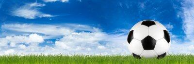 Фотообои широкий ретро футбольный мяч на траве баннер перед голубое небо пасмурно