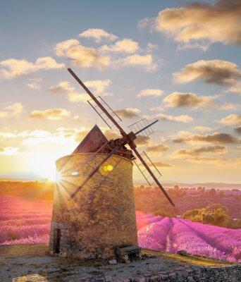 Фотообои Мельница с Левандер поле против красочный закат в Провансе, Франция