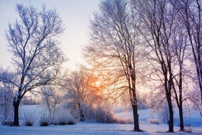 Фотообои зимний закат