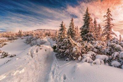 Фотообои Зимний закат на Бескидах