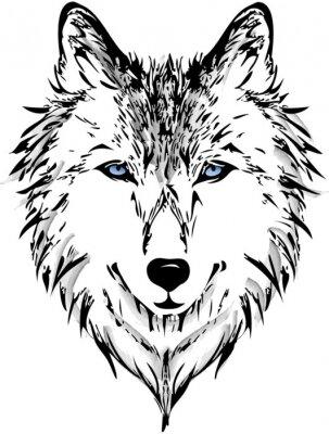 Фотообои Волк голову
