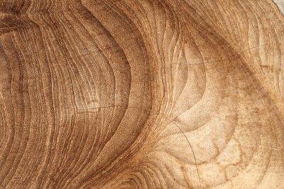 Фотообои Wood texture