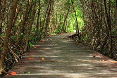 Фотообои деревянный мост в лесу