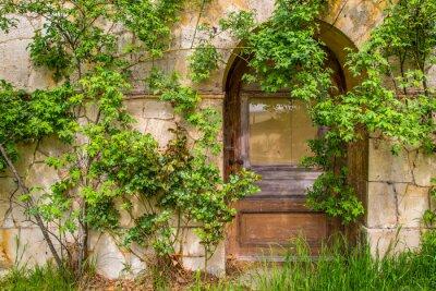 Фотообои Деревянная Дверь