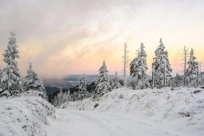 Фотообои Zimowa Droga ж górach