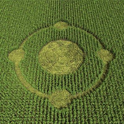 Плакат 3D иллюстрации кругов на полях