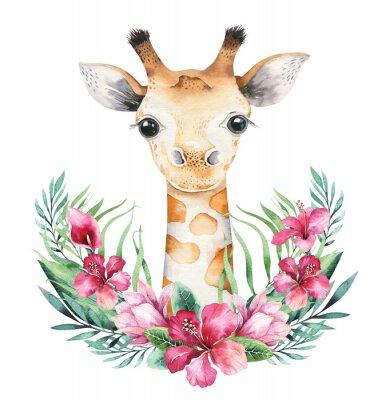 Плакат A poster with a baby giraffe. Watercolor cartoon giraffetropical animal illustration. Jungle exotic summer print.