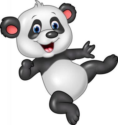 Плакат Прелестный ребенок панды на белом фоне