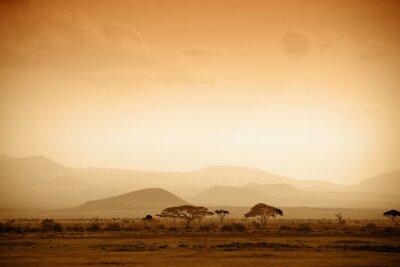 Плакат Африканская саванна на рассвете