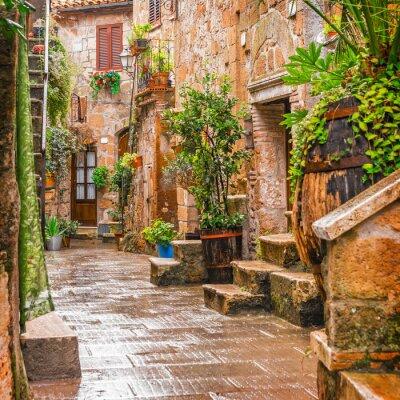 Плакат Аллея в старом городе Питильяно Тоскана Италия