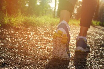 Плакат Бегун спортсмен футов, работающие в природе, крупным планом на обуви. Женщина фитнес бег, концепция активного образа жизни