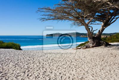 Плакат Пляж в солнечный день