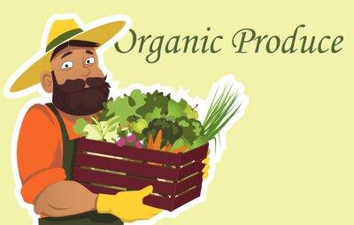 Плакат Бородатый фермер или садовник в шляпе держит деревянный ящик, наполненный свежими овощами и фруктами, копирования пространства справа, не EPS 8 векторные иллюстрации, не прозрачные пленки