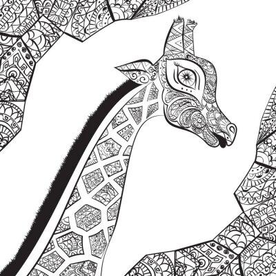Плакат Красивая взрослая Жираф. Рисованной Иллюстрация декоративных жирафа. изолированные жираф на белом фоне. Глава декоративной жирафа