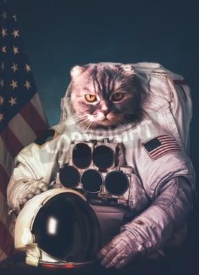 Плакат Красивый кот астронавт.