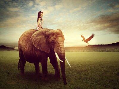 Плакат красивая женщина, сидя на слоне