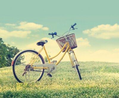 Плакат Велосипед на белом поле цветка и травы в солнечный свет фоне природы