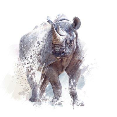 Плакат black rhinoceros watercolor on white background