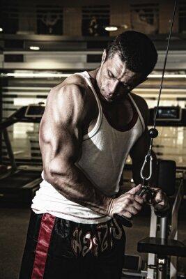Плакат Культурист тренирует мышцы в тренажерном зале