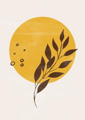 Плакат Botanical vintage print boho sun moon minimalist wall art abstract home decor