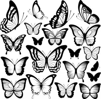Плакат бабочки черные силуэты