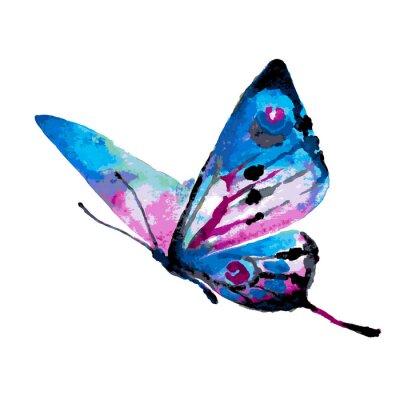 Плакат butterflies design